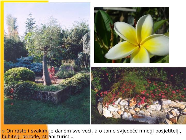 On raste i svakim je danom sve veći, a o tome svjedoče mnogi posjetitelji, ljubitelji prirode, strani turisti…