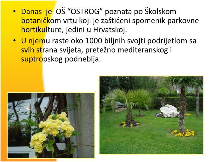 """Danas  je  OŠ """"OSTROG"""" poznata po Školskom botaničkom vrtu koji je zaštićeni spomenik parkovne hortikulture, jedini u Hrvatskoj."""