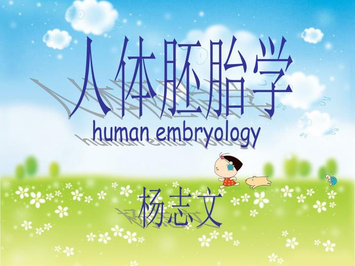 人体胚胎学