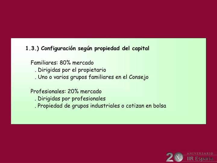 1.3.) Configuración según propiedad del capital