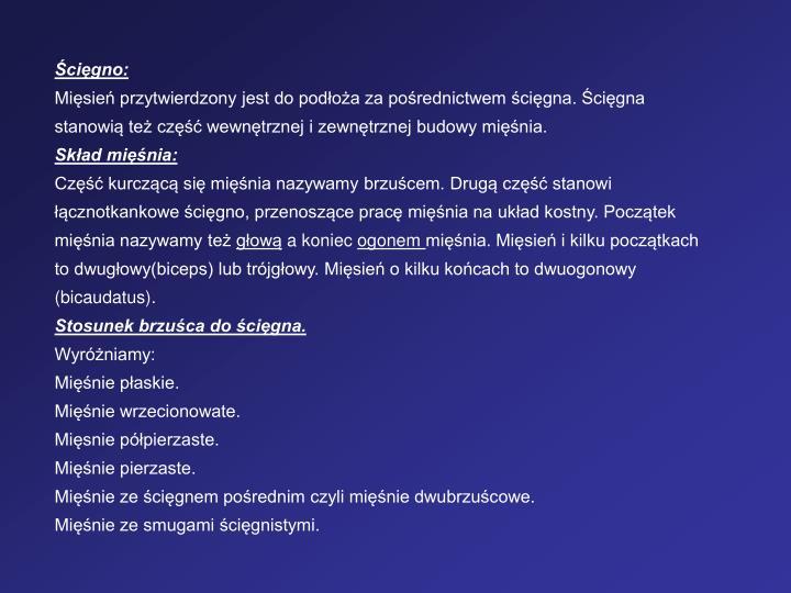 cigno: