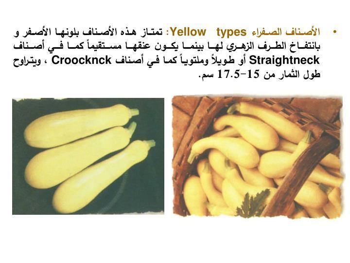 الأصناف الصفراء