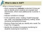 what is data in aaf