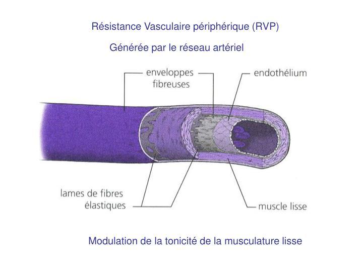 Résistance Vasculaire périphérique (RVP)