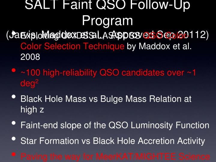 SALT Faint QSO Follow-Up Program