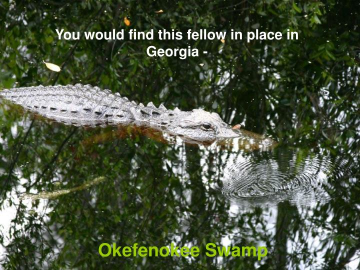 You would find this fellow in place in Georgia -