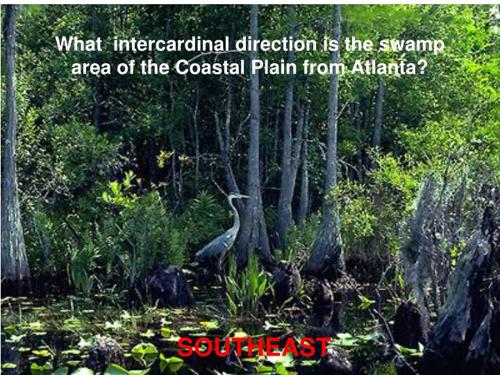What  intercardinal direction is the swamp area of the Coastal Plain from Atlanta?