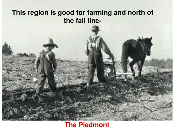This region is good for farming and north of the fall line-