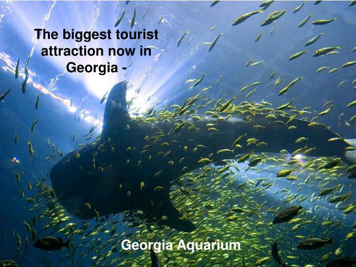 The biggest tourist attraction now in Georgia -