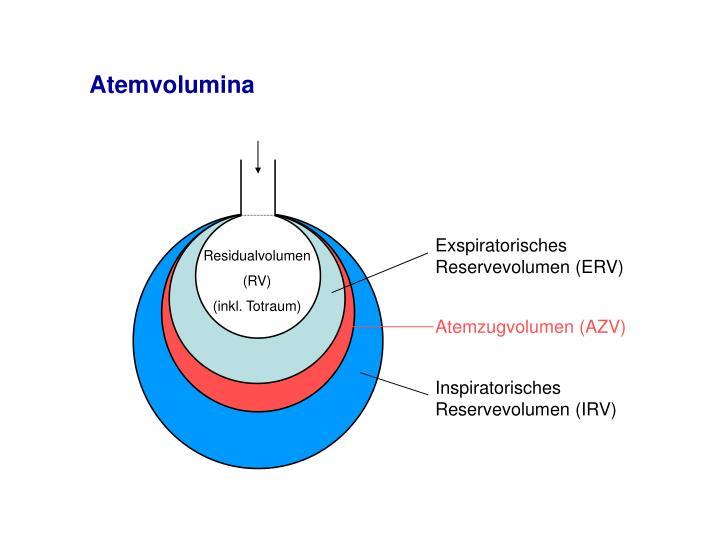 Exspiratorisches Reservevolumen (ERV)