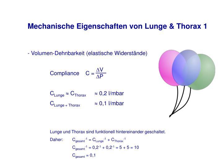 Mechanische Eigenschaften von Lunge & Thorax 1