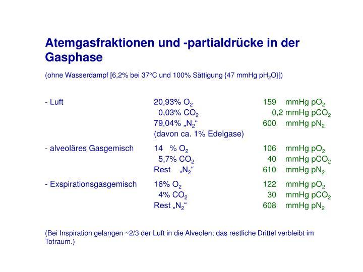 Atemgasfraktionen und -partialdrücke in der Gasphase