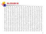 blosum 50