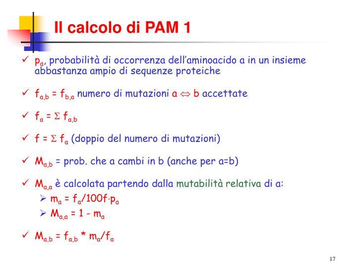 Il calcolo di PAM 1