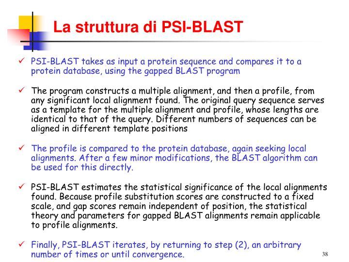La struttura di PSI-BLAST
