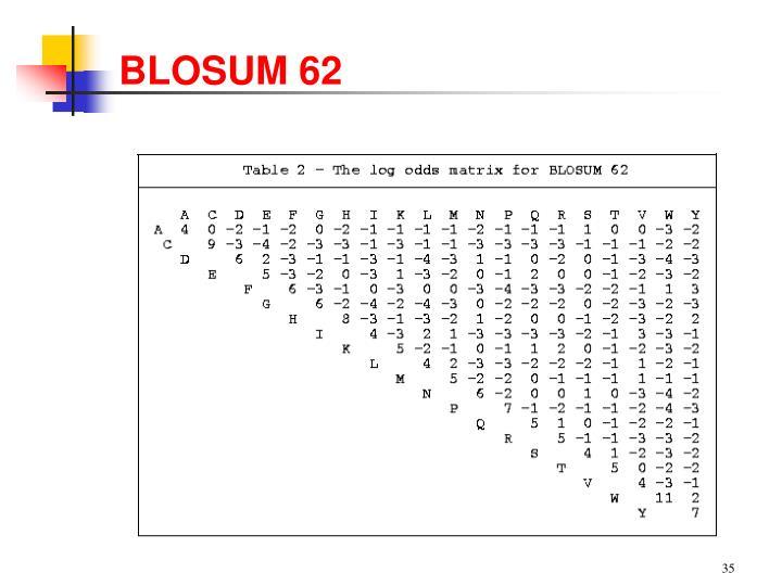 BLOSUM 62