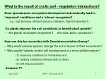 what is the result of cyclic soil vegetation interactions