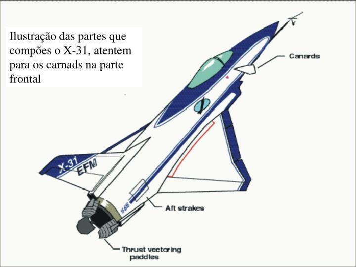 Ilustração das partes que compões o X-31, atentem para os carnads na parte frontal