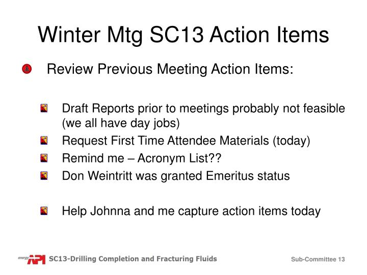 Winter Mtg SC13 Action Items