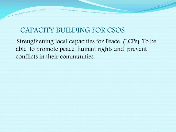CAPACITY BUILDING FOR CSOS