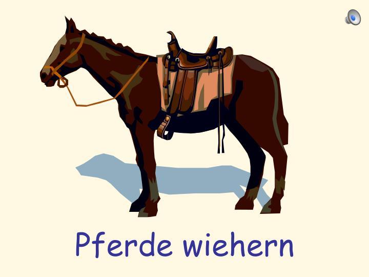 Pferde wiehern