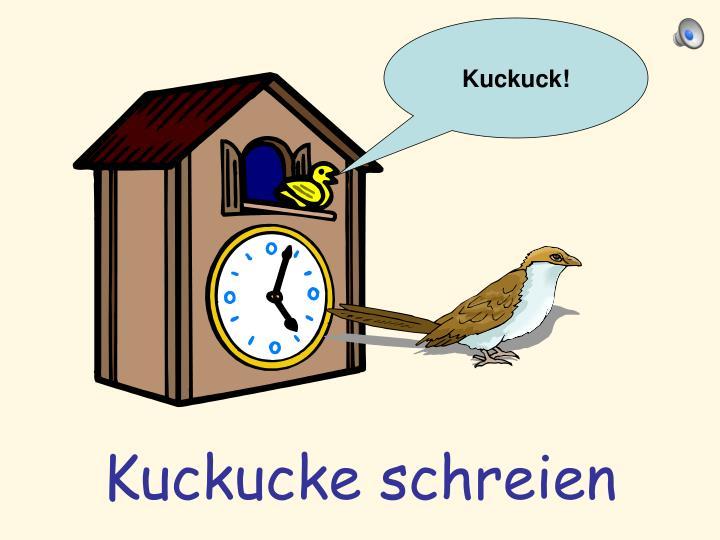 Kuckuck!