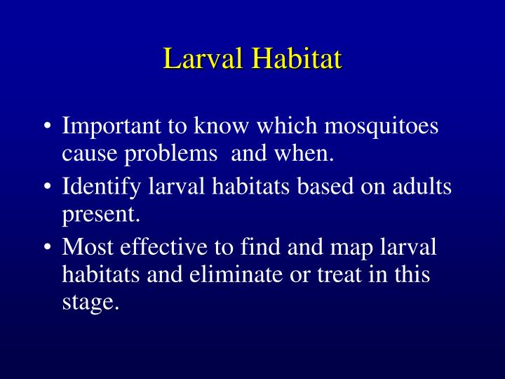 Larval Habitat