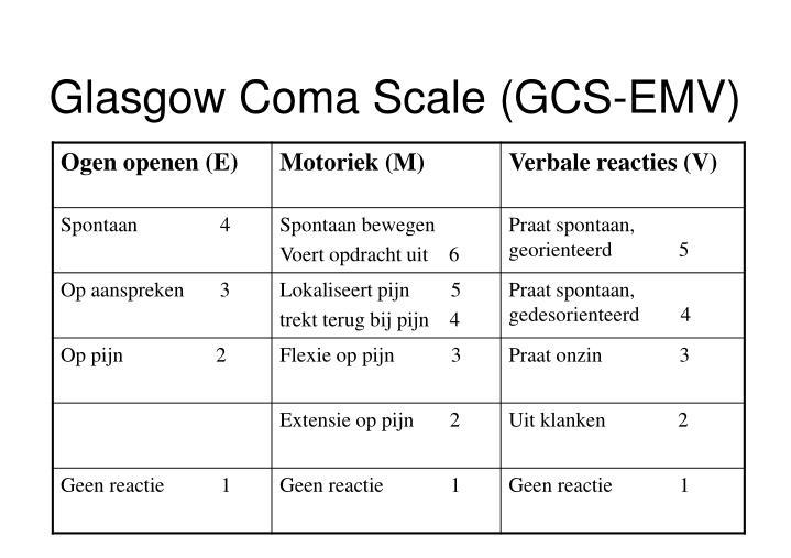 Glasgow Coma Scale (GCS-EMV)