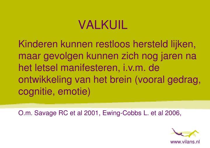 www.vilans.nl