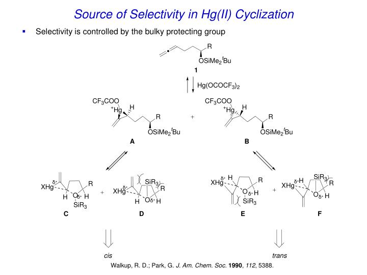 Source of Selectivity in Hg(II) Cyclization