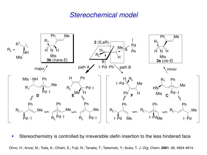 Stereochemical model