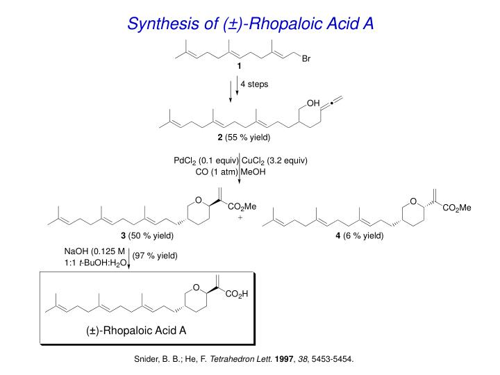 Synthesis of (±)-Rhopaloic Acid A