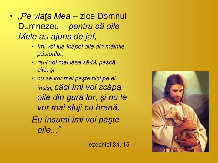 Iezechiel 34, 15