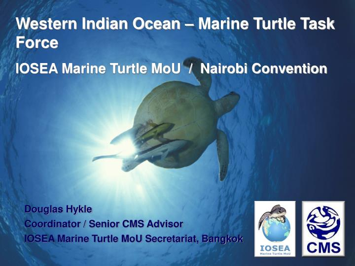 Western Indian Ocean – Marine Turtle Task Force