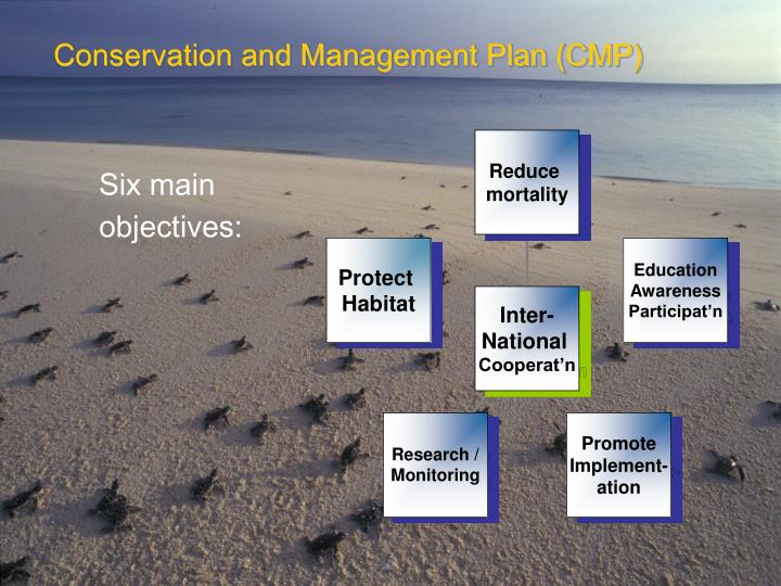 Conservation and Management Plan (CMP)