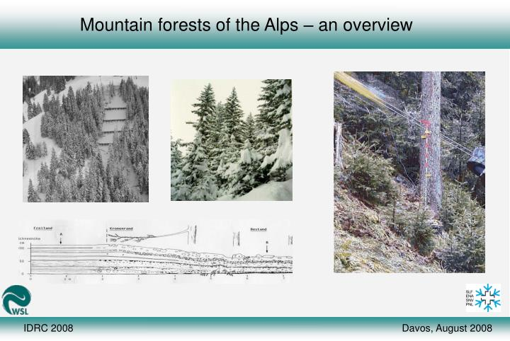 Mountain forests of the Alps – an overview