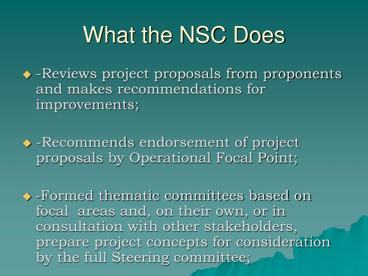 What the NSC Does