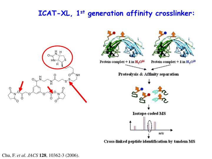 ICAT-XL, 1