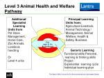 level 3 animal health and welfare pathway