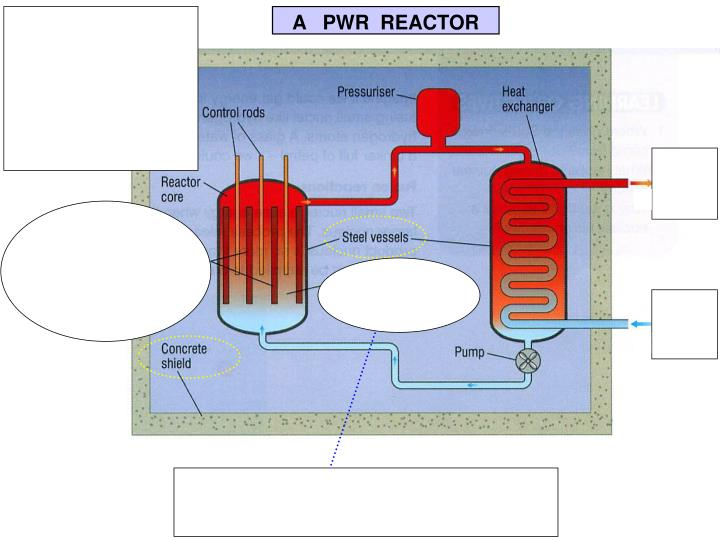 A   PWR  REACTOR
