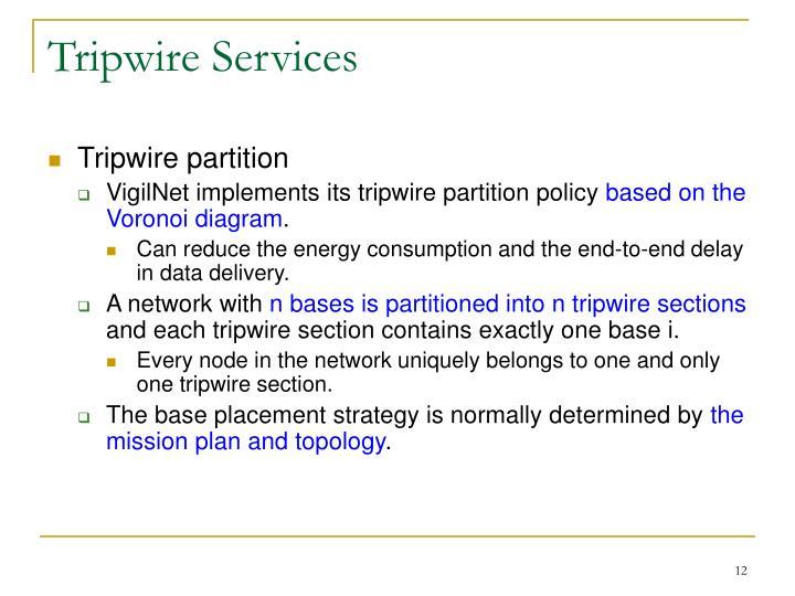Tripwire Services