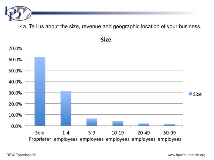4a. Tell us about the size, revenue and geographic location of your business.