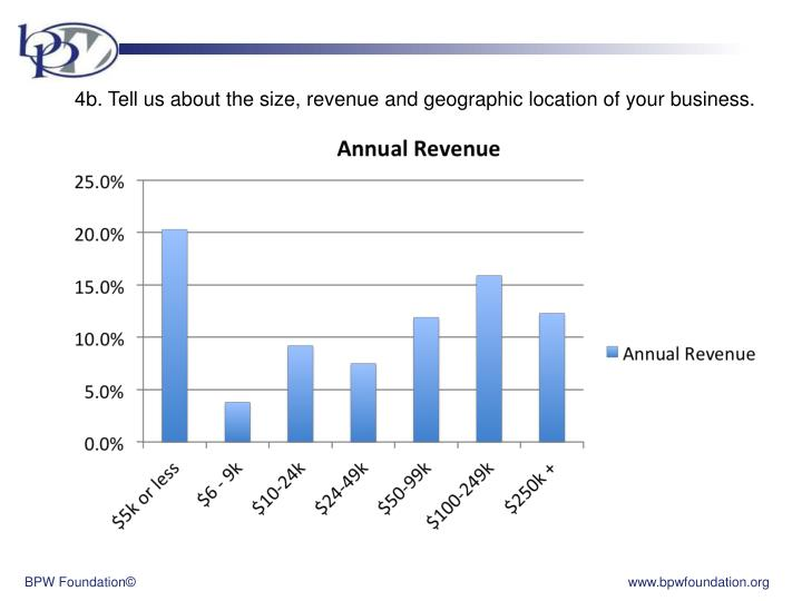 4b. Tell us about the size, revenue and geographic location of your business.