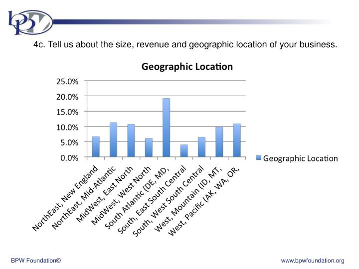 4c. Tell us about the size, revenue and geographic location of your business.