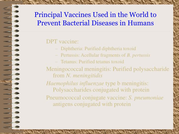 Principal Vaccines Used in the World to Prevent Bacterial Diseases in Humans