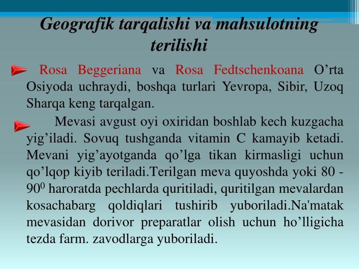Geografik