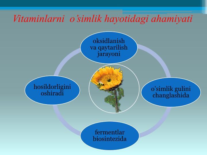 Vitaminlarni  o'simlik hayotidagi ahamiyati