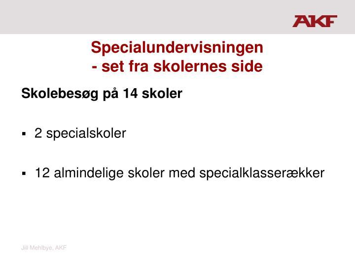 Specialundervisningen