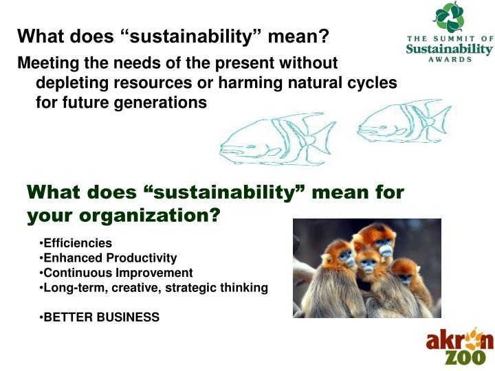 What does sustainability mean