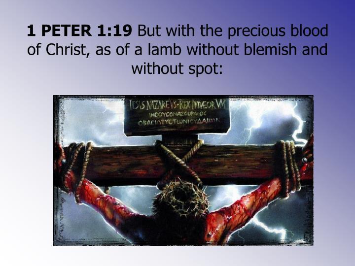 1 PETER 1:19